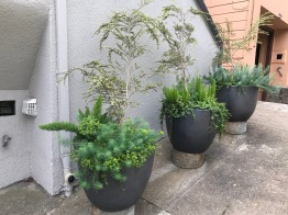 A.Roanoke.front containers 2